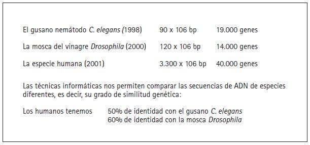 BBVA-OpenMind-Figura-6-Gines-Morata