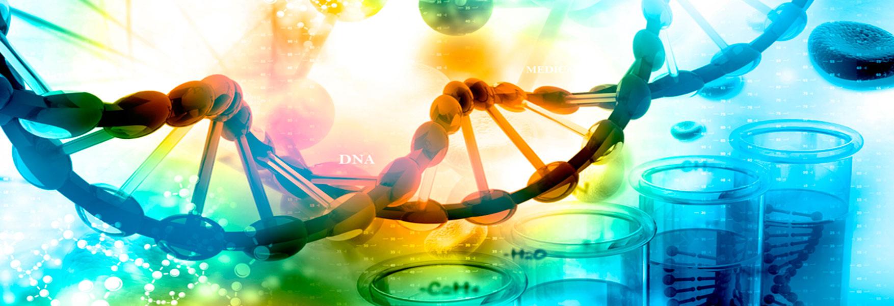 El Siglo Del Gen Biología Molecular Y Genética Openmind