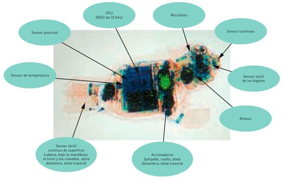 BBVA-OpenMind-Innovacion-figura-4-Takanori-shibata