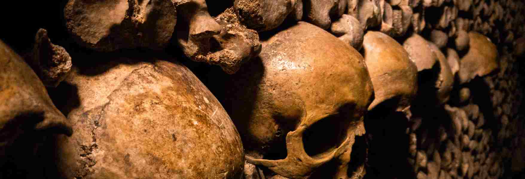 The Black Death: Turning Point and End of the Middle Ages? - OpenMind