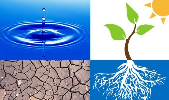 OpenMind - Jose Antonio Lopez - Adaptación a la sequía- en - Agricultura