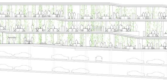 BBVA-OpenMind-Reinventar-la-empresa-Herzog-Los forjados de los edificios siguen la topografía del terreno. Algunas de las alas son muy largas, por lo que se han dividido en secciones más cortas y escalonadas