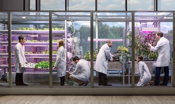 BBVA-OpenMind-Ventana-reportaje-ciudades-del-futuro-farm