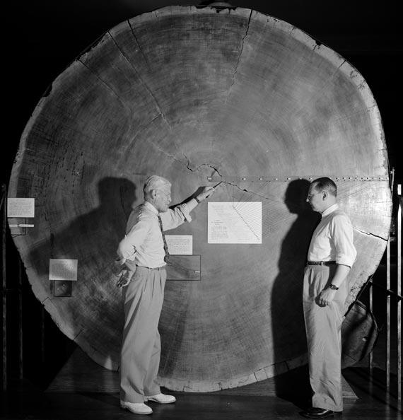 BBVA-OpenMind-el-astronomo-que-se-fijo-en-los-arboles-douglass