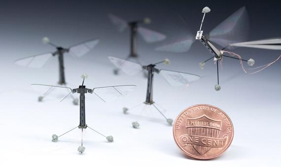 BBVA-OpenMind-robots-moscas-robóticas-wiss-institute