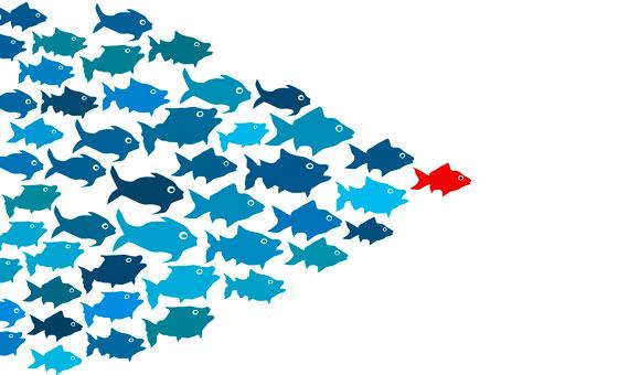 BBVA-OpenMind-Genero,liderazgo-y-organizacion
