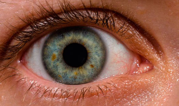BBA-OpenMind-ventana-al-conocimiento-como-ven-tus-ojos-1