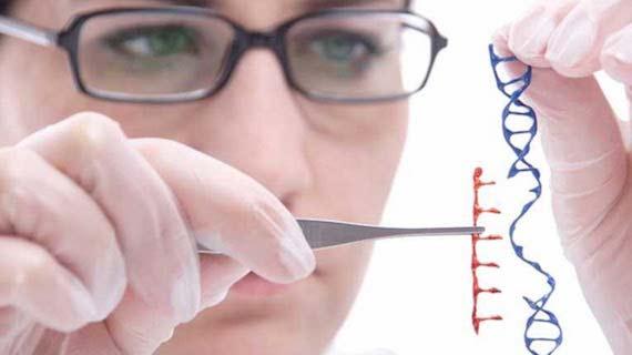 bbva-openmind-ciencia-2016-1-genoma