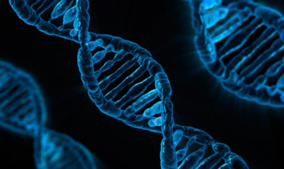 bbva-openmind-mrejon-genes-saltarines