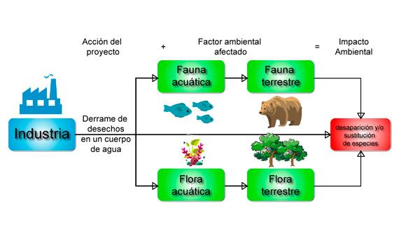 bbva-openmind-evaluacion-impacto-ambiental-1