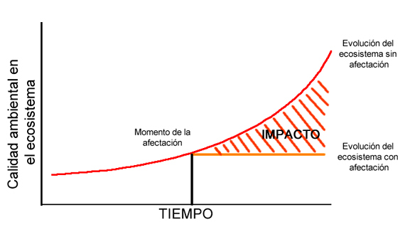 Representación grafica de un impacto ambiental. Tomada de Orea (2002)