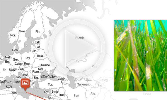 bbva-openmind-mapa-joyas-ppal