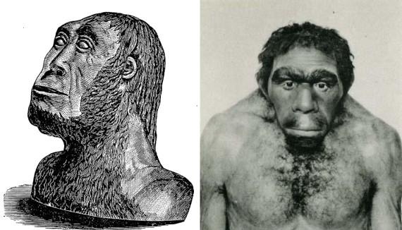 why had neanderthals visit extinct