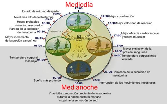 Biogeociencia – Recursos de biología y geología y ciencia actual