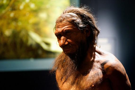 why managed neanderthals visit extinct
