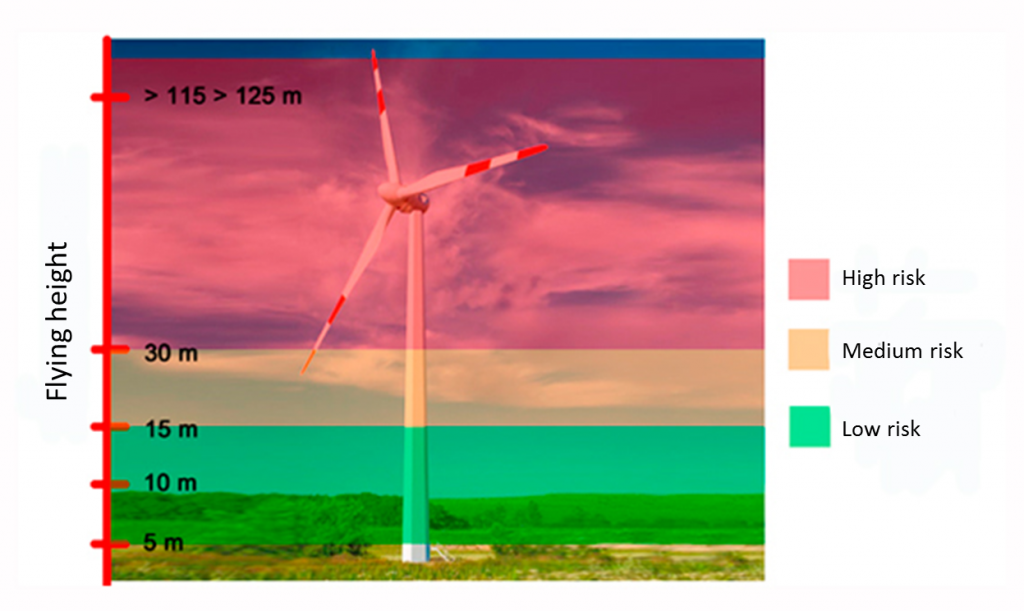 bbva-openmind-nestor-energias-renovables-eng-Risk of crash against a wind turbine with 5,000 W rated power / Source: Personally prepared using information from the Spanish Ornithology Society
