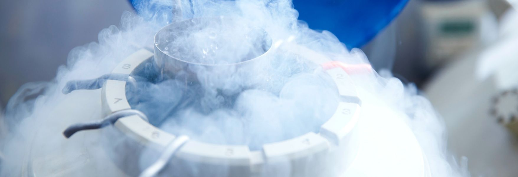 The Dream of Cryopreservation - OpenMind