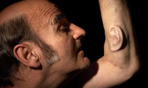 """""""Oído en el brazo"""". Sterlac. Células cultivadas quirúrgicamente en su brazo. Fotografía  N sellars. Fuente: http://www.indiecolors.com"""
