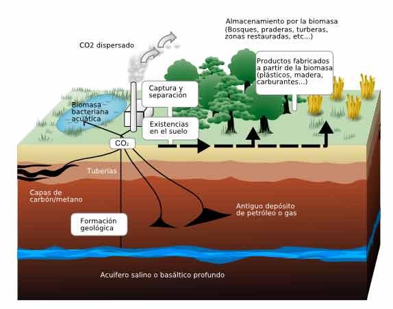 Esquema que muestra el secuestro terrestre y geológico de las emisiones de dióxido de carbono. Crédito: LeJean Hardin, Jamie Payne