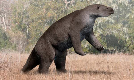 Artistic rendition of a Megatherium americanum, similar to the Megalonyx. Credit: Nobu Tamura