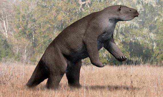 Artistic rendition of a Megatherium americanum, similar to the Megalonyx. Credit: Nobu Tamura