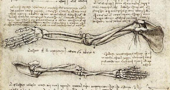 La huella de Leonardo: de la ingeniería a la anatomía - OpenMind