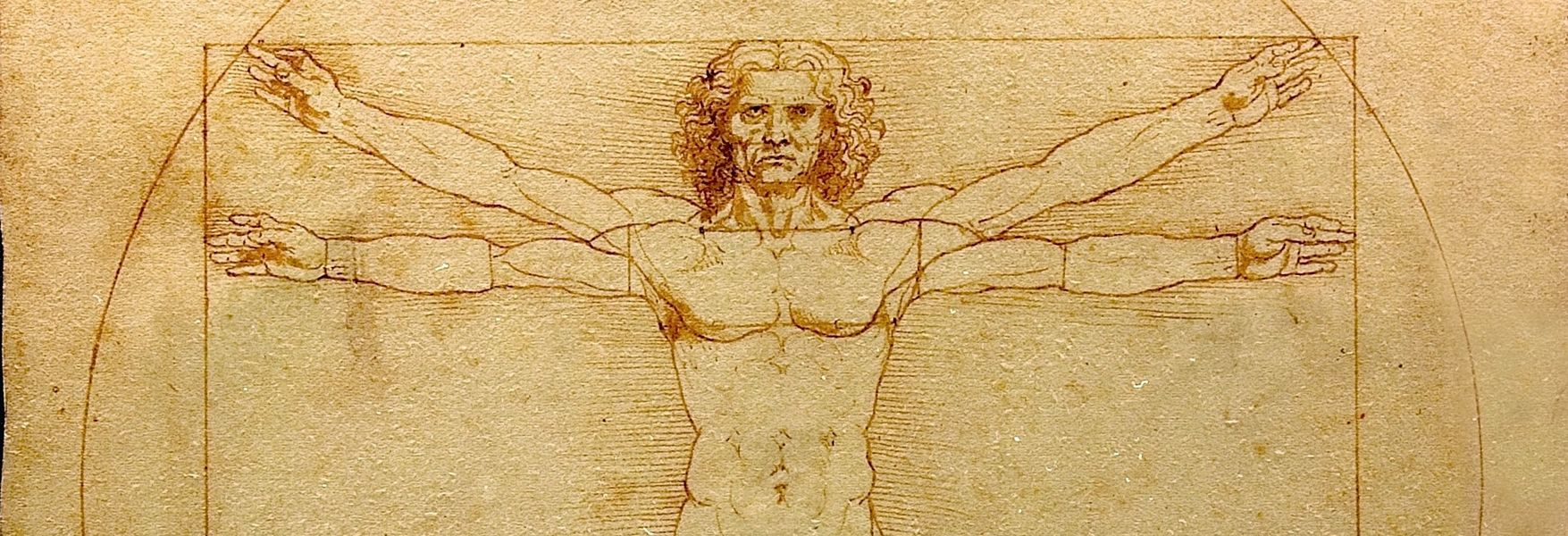 Leonardo's Footprint: From Engineering to Anatomy - OpenMind