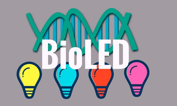 bioled-ppal