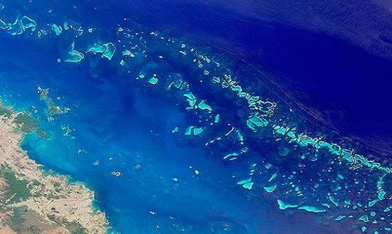La Gran Barrera de Coral: la historia de una maravilla natural - OpenMind