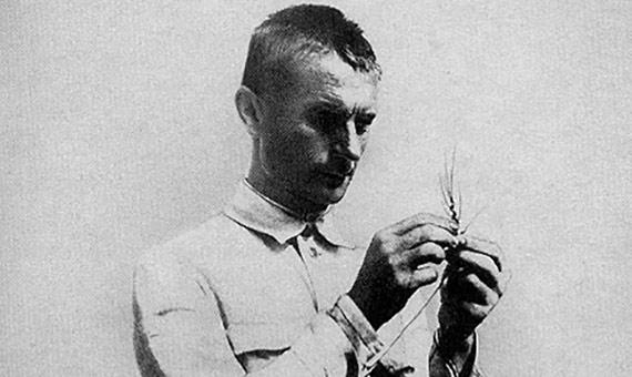 La vernalización practicada por Lysenko consistía en un tratamiento de frío y humedad aplicado a las semillas invernales de trigo. Fuente: Wikimedia