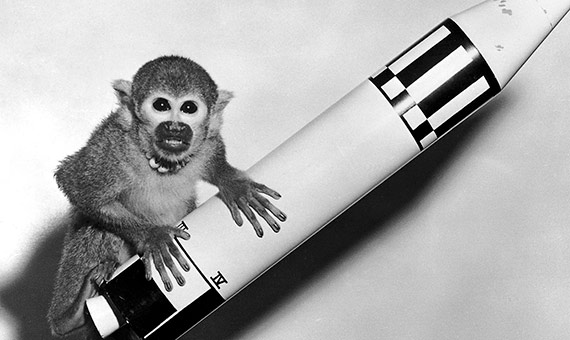 Monkey Baker with a Model Jupiter Vehicle, 29 May 1959 / Image: NASA/Marshall Space Flight Center