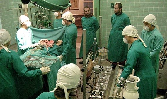 Recreación de la escena del primer transplante de corazón del Dr. Barnard en el Museo del Corazón de Ciudad del Cabo. Crédito: mallix