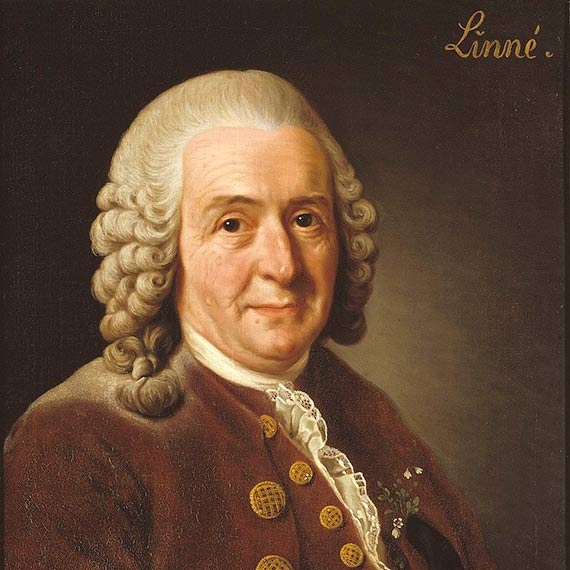 Carl von Linné 1707–1778