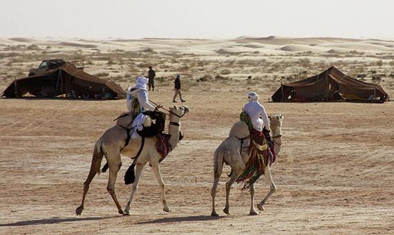 Los camélidos son un medio de transporte clave para los pueblos nómadas. Crédito: McKay Savage.