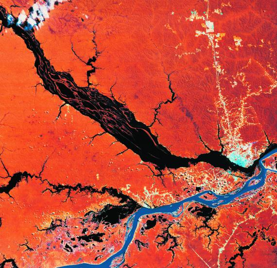 BBVA-OpenMind-Libro 2018-Perplejidad-Centeno-Lajous-Vista-satelite-Satellite view of the confluence of the Negro and Solimoes rivers flowing into the Amazon.