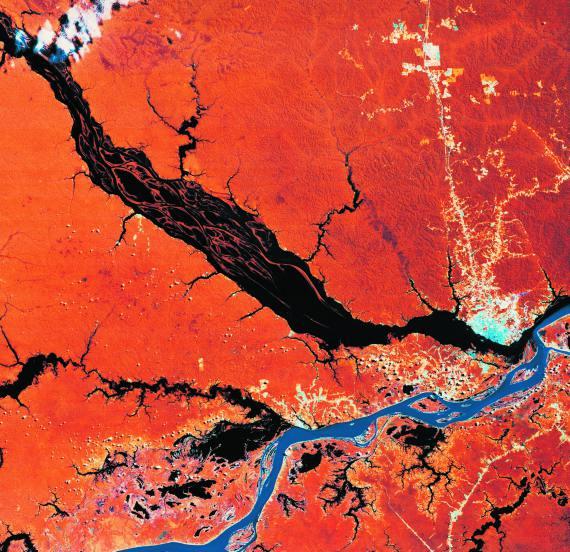 BBVA-OpenMind-Libro 2018-Perplejidad-Centeno-Lajous-Vista-satelite-Vista de satélite de los rios Negro y Solimoes en su confluencia para formar el Amazonas.
