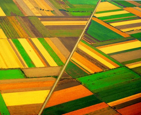 BBVA-OpenMindKallinikos-agricultura-Poco a poco la tecnología se adentra en territorios que históricamente se han mantenido al margen, como es el caso de la agricultura, en el que ha tenido un fuerte impacto.