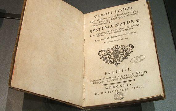 Systema naturae recogía más de 13.000 especies de plantas y animales. Fuente: Wikimedia