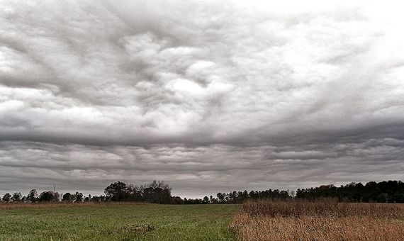 Los nimbostratos son nubes muy oscuras que impiden el paso de la luz solar. Crédito: PiccoloNamek