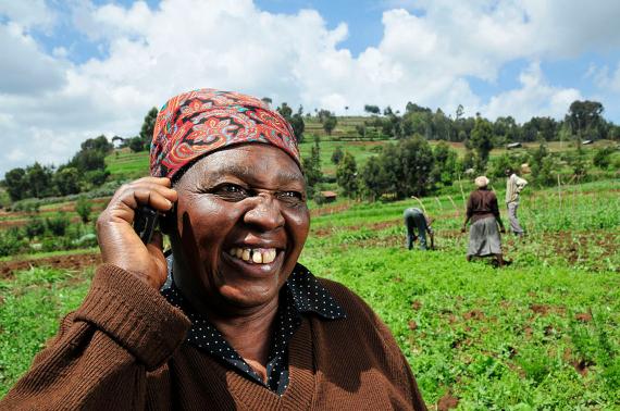 BBVA-OpenMind-Materia-Tecnologías móviles para el desarrollo del tercer mundo-Apps tercer mundo_2-iCow ofrece a los granjeros y agricultores multitud de informaciones y consejos útiles para sus explotaciones. Crédito: CIAT
