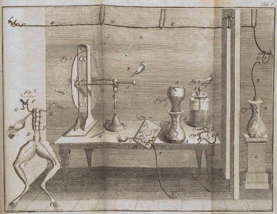 Experimento con ranas de Luigi Galvani. Fuente: Wikimedia