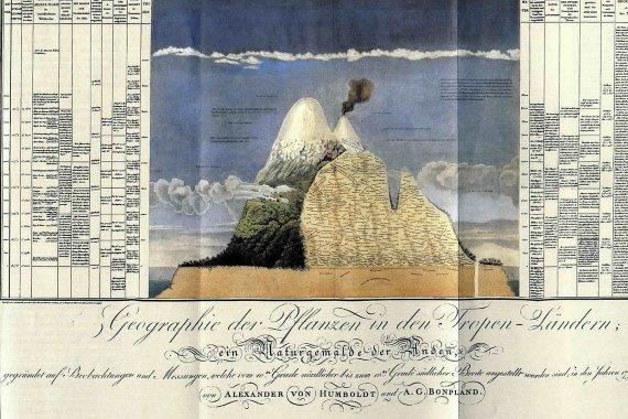 Uno de las ilustraciones de Humboldt de la distribución de plantas en una montaña. Fuente: Wikimedia