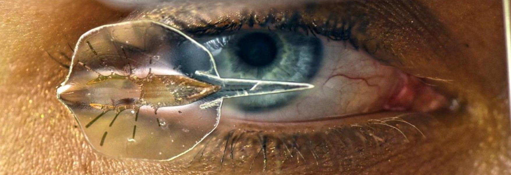 Biohybrid robots, the next step in the robotic revolution   OpenMind