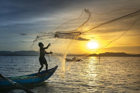 BBVA-OpenMind-Materia-Fin de la Década de la Biodiversidad de la ONU-Biodiversidad 4-El nuevo plan post-2020 posibilita cambios transformacionales mediante la movilización de sectores como la agricultura o la pesca. Crédito: Quangpraha