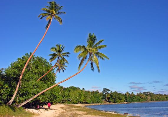 BBVA-OpenMind-coronavirus-Hay lugares seguros para refugiarse de una pandemia 3-En islas que han mantenido estrictos controles fronterizos, como Vanuatu,no hay contagios. Crédito: Phillip Capper