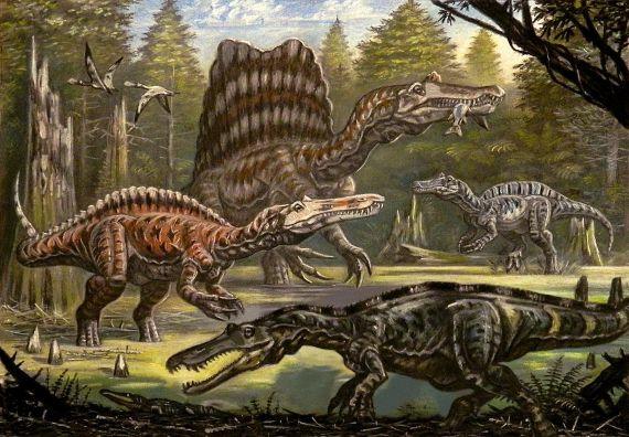 Comparación anacrónica de cuatro especies de espinosaurios, en sentido horario desde la izquierda: Suchomimus tenerensis, Spinosaurus aegyptiacus, Irritator challengeri y Baryonyx walkeri. Crédito: Андрей Белов