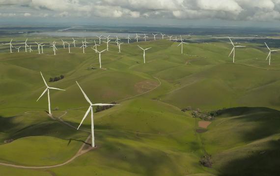 El despliegue de renovables es un de los siete puntos estratégicos para lograr la neutralidad climática. Imagen: Tyler Casey, Unsplash.