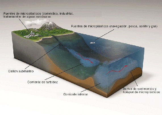 La dinámica marina crea hotspots donde los microplásticos tienden a acumularse. Crédito: The University of Manchester