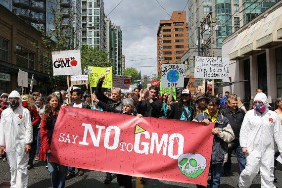 BBVA-OpenMind-Ventana-El largo y tortuoso camino del arroz dorado - manifestación-Manifestación contra OGM. Crédito: Rosalee Yagihara