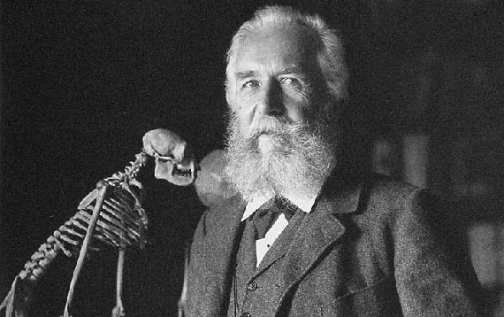 "It was during the 19th century that the word ""ecology"" was coined by the German naturalist and philosopher Ernst Haeckel. Image: Wikimedia Commons"